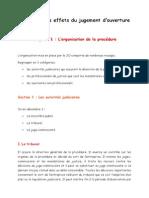 Partie 1, Titre 2, Chapitre 1, L'organisation de la procédure