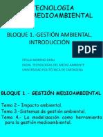 Tma Ti 02 Gestion Ambiental Ti