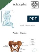 Ginecologia y Embarazo Tempalte