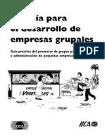 Guia Para El Desarrollo de Empresas