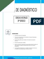 Prueba de Diagnostico Cnaturales 3basico 2013