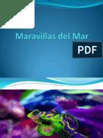 Luis Velazquez - Maravillas Del Mar