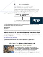 CONSERVATION OF THE CHEETAH