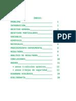Informe Preparacion de Un Patron Primario 1