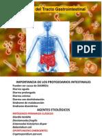 Parasitosiis Intestinals