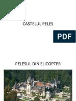 Castelul Pele s