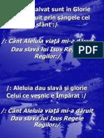 Aleluia Salvat Sunt in Glorie-3