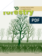 Agro Forestry