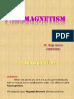 Para Magnetism