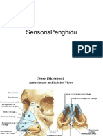 Sensor is Peng Hi Du