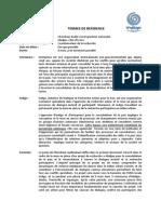 TDR Chercheur Audio-Visuel_final