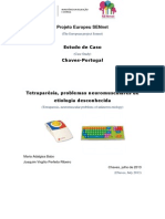 Estudo de Caso Projeto Sennet Cristiana Chaves 2013 2