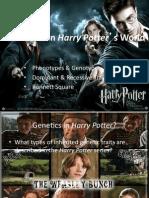 Genetics Harry Potter Ppt