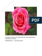 76881565 Rose Export and Marketing Channels