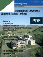 Biofuels_Bain.pdf