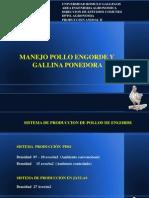 Manejo Pollos y Ponedoras II
