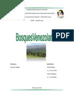 Bosques de Venezuela