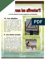 Les Plus Dangereux Animaux de Roumanie Franceza Design