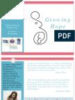 Innovations in Pregnancy Support Programming Webinar - 3.5.14