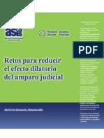 1. Retos Del Amparo Judicial 2011