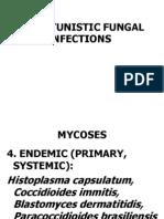 infeksi jamur oportunistik