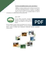 Sectores Productivos Y de Servicios Del Entorno Afines a La Profesion