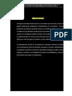 PEI-2013.doc