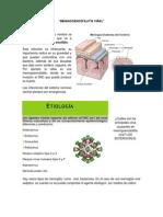 TIRAJE CLASE 31(1).docx