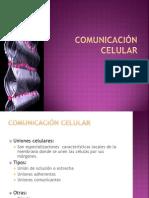 2 Comunicacion Celular