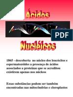 Aula DNA RNA e Sintese de Proteinas