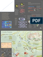 DNA-Gen (poster-bilim teknik)