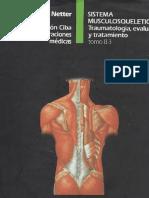 Musculoscheletal Netter