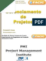 02_ Introducao - PMBok - Plano Estrategico 2013A