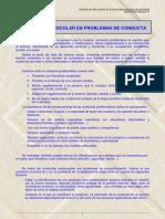 Intervencion Problemas Conducta(2)
