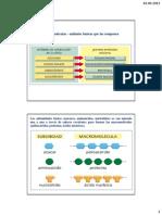 05 Aminoácidos y Proteínas - Estructura, propiedades y función (1)