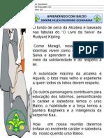 apostilabaloo1-130825103616-phpapp01