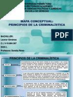 Mapa Conceptual Principios Criminalisticos