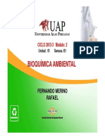 Clase 1 Bioquimica Ambiental(1)