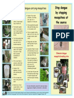 Brochure Dengue Fever