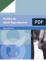 Perfiles_SR_02_BC (1).pdf