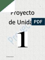 Proyecto de Unidad 1