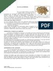 Tema 6 La Financion de La Empresa