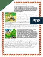 Kisah Semut Dan Kepompong