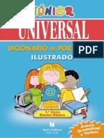 Dicionario Junior