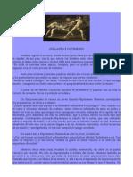 Atalanta e Hipómenes