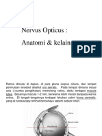 Nervus Opticus