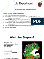 6 Enzymes Powerpoint