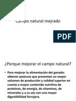 camponaturalmejrado-120918191617-phpapp02