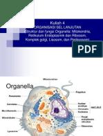 4 Struktur Dan Fungsi Sel (Organel)