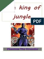 Phantom the Crusader